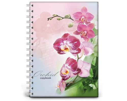 Бизнес-тетрадь Проф-пресс Орхидея А4 120 листов цветная в клетку на гребне 215х295 мм - (494402К)