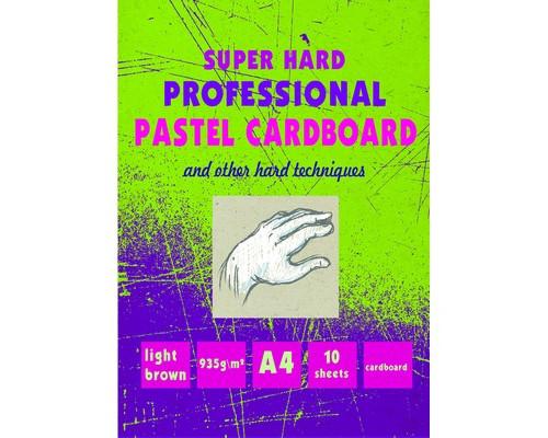Альбом для пастели А4,10л,бл.карт.935 г,02601