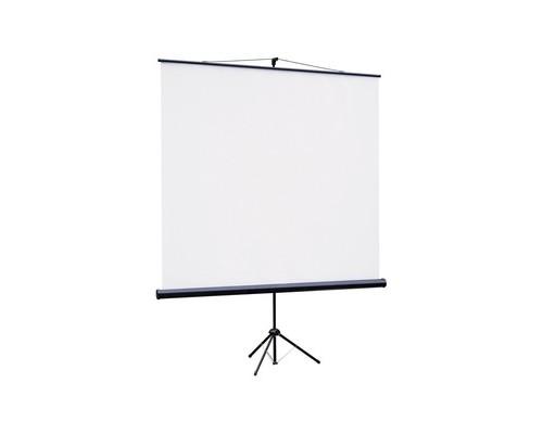 Экран мобильный ScreenMedia 200x200 STM-1103 - (145795К)